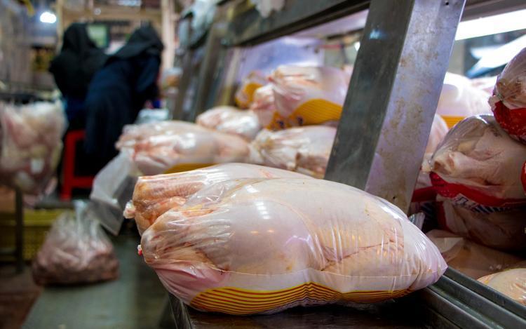قیمت مرغ به مرز 19 هزار تومان رسید