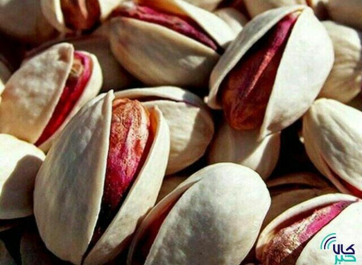 گشایش اولین انبار پسته بادامی در بازار گواهی سپرده کالایی بورس کالا