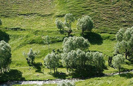 زیبایی های دره و روستای لیقوان به روایت تصویر