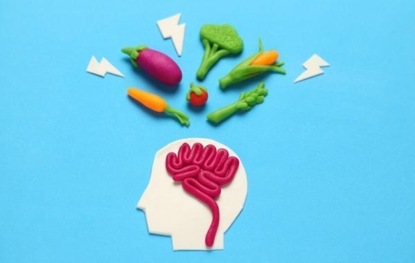 10 ماده غذایی عالی برای تقویت مغز و حافظه